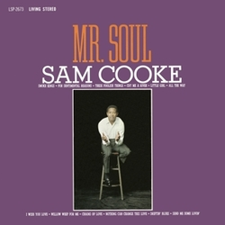 MR. SOUL -COLOURED-...