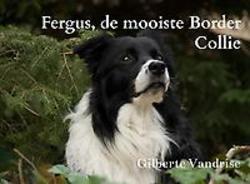 Fergus, de mooiste Border...