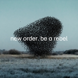 BE A REBEL -COLOURED- -GREY...