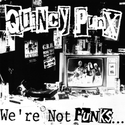 WE'RE NOT PUNKS ... BUT.....