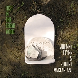 LOST IN THE.. -DOWNLOAD- .....