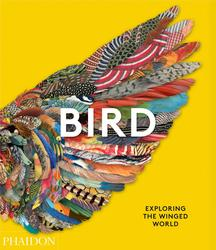 Bird: Exploring the Winged...