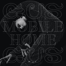 MOBILE HOME -HQ- 180GR.