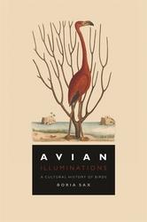 Avian Illuminations