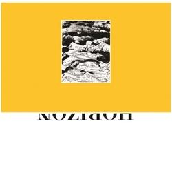 MUSEUM ON THE HORIZON