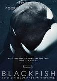 Blackfish, (DVD)