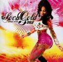 SOCA GOLD 2013 -CD+DVD-